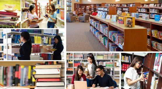 Mở lớp Thư viện - Thiết bị trường học chính quy học